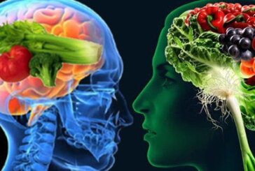 Hrana za mozak