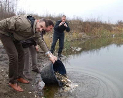 Poribljavanje sa 47 000 primeraka riblje mlađi