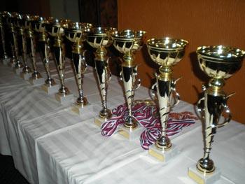 Sportski savez i Pobeda proglasili najbolje sportiste