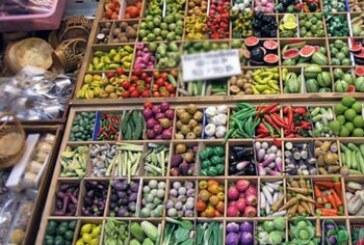 Usporen izvoz poljoprivrednih proizvoda