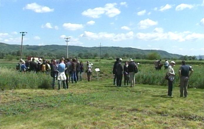 Vodeći stručnjaci posetili ogledna polja Instituta za krmno bilje