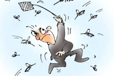 Osam saveta kako da se odbranite od komaraca i krpelja