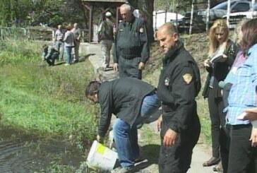 Masovno poribljavanje reka i jezera na Jastrebcu (VIDEO)