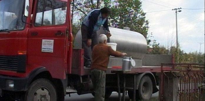 Stočni fond znatno smanjen, mladi odlaze sa sela (VIDEO)