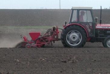Počela setva pšenice