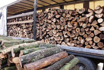 Drva za ogrev dovoljno, ali nema kupaca (VIDEO)