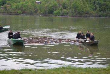 Akcija čišćenja jezera Ćelije (VIDEO)