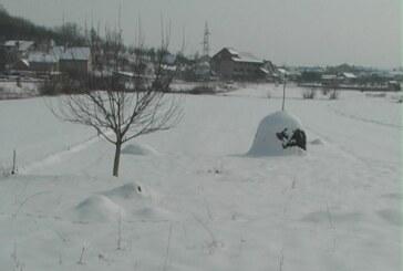 Snežni pokrivač od 30 centimetara u potkopaoničkim selima (VIDEO)