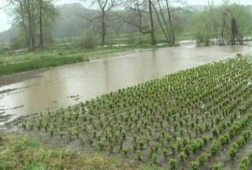 Predato 500 zahteva za sanaciju štete od poplava (VIDEO)
