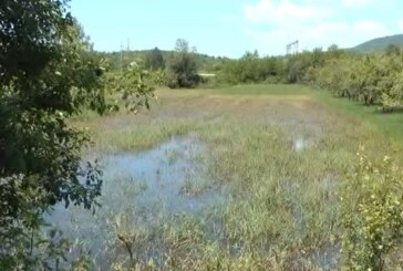 Ribarska reka: Dezinfekcija u domaćinstvima i procena štete