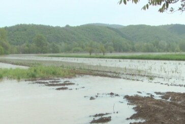 Sutra podela goriva poljoprivrednicima sa poplavljenih područja (VIDEO)