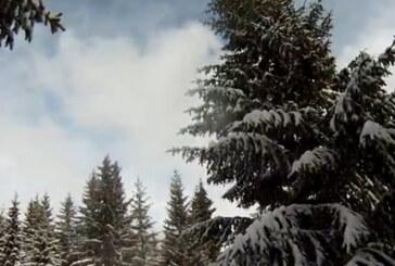 Zima posle Miholjskog leta: Sneg na Kopaoniku