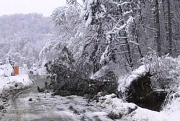 Obilan sneg naneo nevolje Župljanima