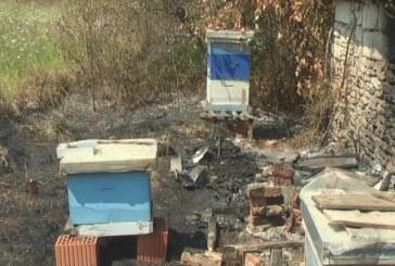 U požaru u Čitlučkom ataru uništeno više hektara njiva i voćnjaka, a penzioneru Milomiru Krsmanoviću izgorelo 6 košnica