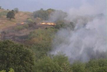 Drugi kritičnan period za pojavu šumskih požara
