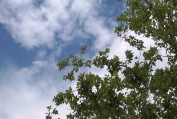 Osveženje nakon tropskih vrućina