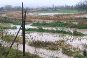 Izlivanje Ribarske reke, porast vodostaja na Moravi i Rasini