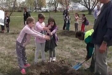 Povodom 40 godina od prve ORA u Kruševcu: Likovna kolonija osnovaca i prva Dečija radna akcija