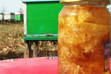 Propolis osnovno pčelinje sredstvo sa širokim spektrom dejstva