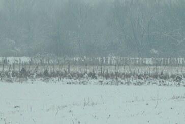 Zimsko oranje – do visine snežnog pokrivača od 10 centimetara
