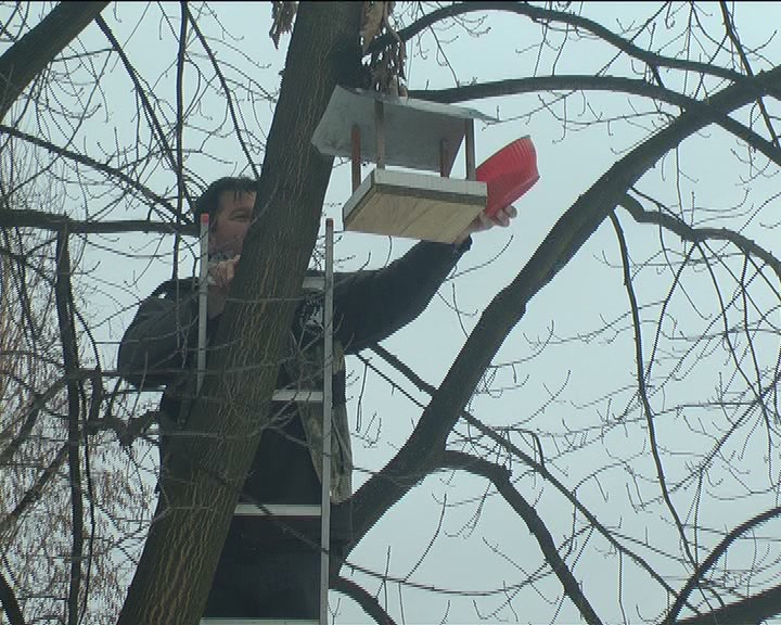 """""""Zlatno pero"""" organizovalo akciju prikupljanja hrane i postavljanje hranilica ptice"""