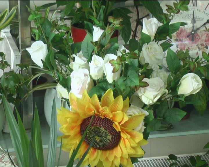 """Cvećara """"Biser"""" priprema osmomartovsku izložbu cveća"""