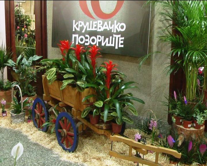 Osmomartovska prodajna izložba cveća u foajeu Kruševačkog pozorišta