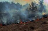 Veći požar na potezu između Šanca i Bošnjana, gori nisko rastinje i trava