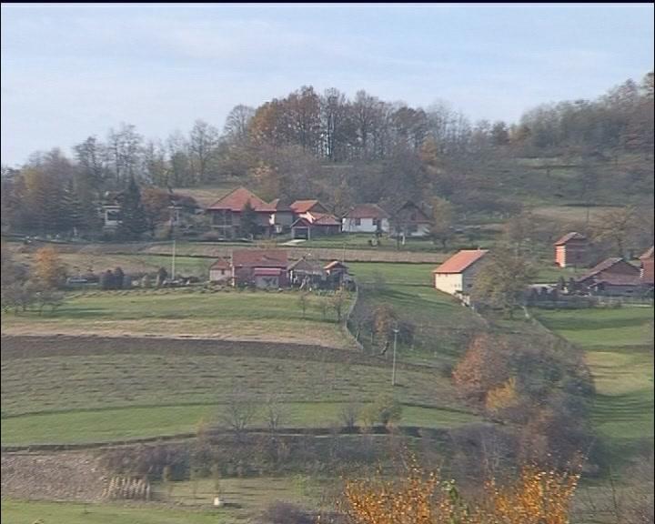 Polovinom aprila Grad Kruševac raspisao tri javna poziva za razvoj i unapređenje poljoprivredne proizvodnje