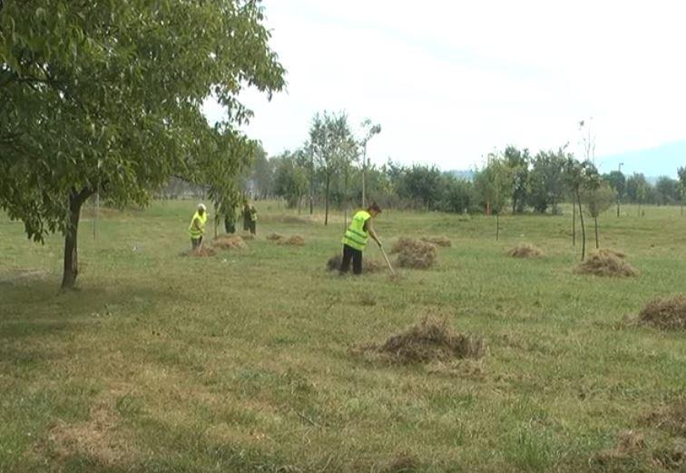 Javno komunalno preduzeće Kruševac brine o higijeni grada