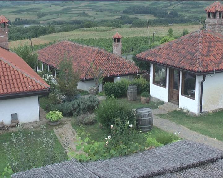 """U poseti """"Vinogradima Nikolić"""" u Vitkovu: Dom vina u srcu Župe"""