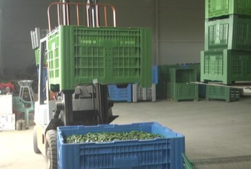 Kraj uz obalu Zapadne Morave poznat u prvom redu po proizvodjačima kornišona i paprika
