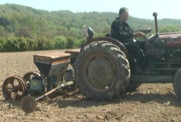 Zbog nepovoljnih vremenskih uslova setva pšenice u Rasinskm okrugu i ove godine kasni