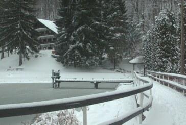 Jastrebac pod snegom