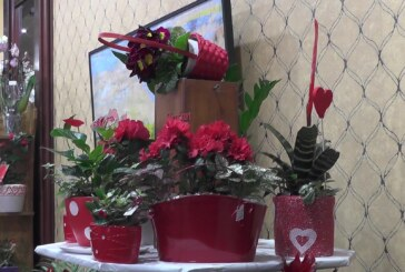 Otvorena Tradicionalna osmomartovska prodajna izložba cveća JKP Kruševac