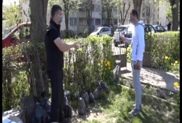 Opština Trstenik započela akciju podele sadnica trešnje