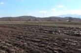 Jastrebac: kako se odvija život na selu u novonastaloj situaciji