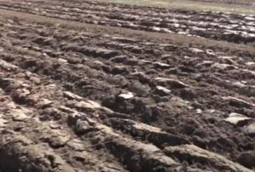 Analizom zemljišta do boljih prinosa