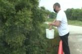 Akcija tretiranja vodenih površina larvicidima protiv larvi komaraca