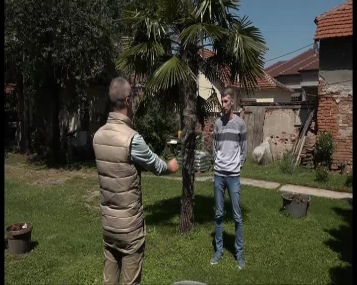 Jedna palma na obali Crnice