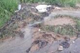 Velike količine padavina u Velikim Kupcima, Trebotinu i Žabaru