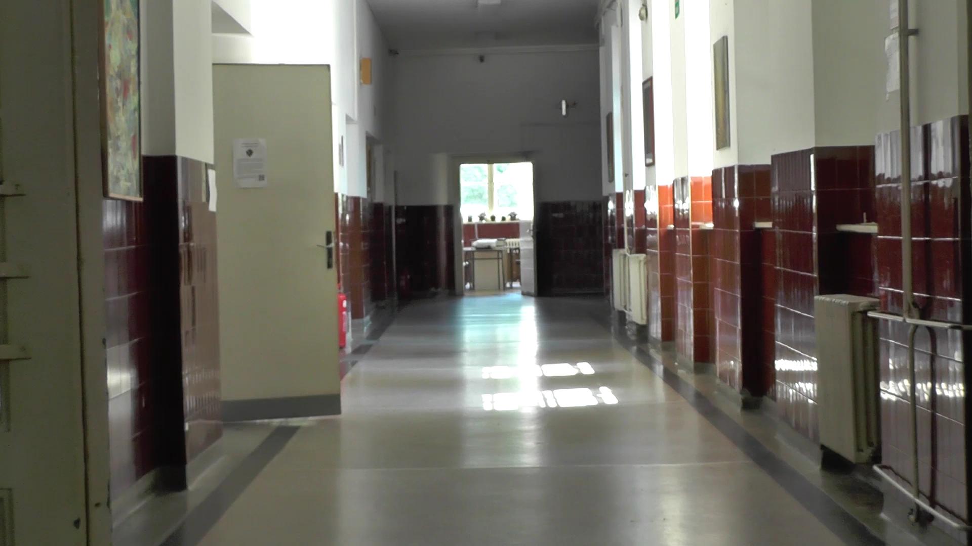 Kruševačka gimnazija će ove godine u prvi razred upisati 300 učenika u 11 odeljenja