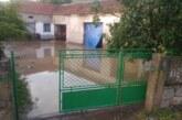 Poplavljena domaćinstva i usevi u Šancu