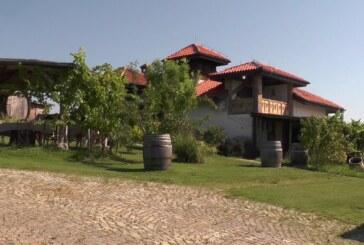 Iz Vinarije NIKA potvrđuju dobar rod u vinogradima