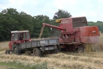 U toku žetva pšenice i ječma