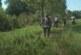 Radnici JKP Kruševac počeli su sa košenjem trave na tri šetališta i plaže na levoj obali Rasine
