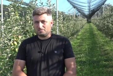 Porodica Antić iz Parcana pre par godina počela sa proizvodnjom jabuka, rad se isplatio