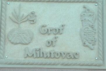 Veliki deo voćnih sadnica u Srbiji kreće iz Rasinskog okruga