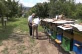 Pčelari nisu zadovoljni sezonom, očekivani prinos meda izostao nakon bagremove paše