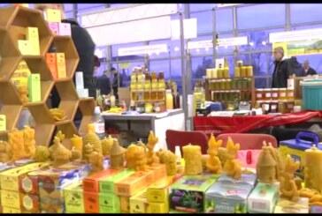 Pčelinji proizvodi i zdravlje